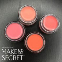 Кремовые румяна Make up Secret (Cream Blush) CB01 Холодный розовый MAKE-UP-SECRET
