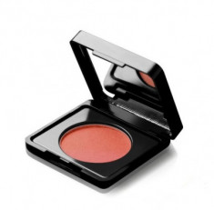 Румяна PAESE BLUSH ARTIST with argan oil тон 60 3г