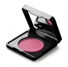 Румяна PAESE BLUSH ARTIST with argan oil тон 61 3г