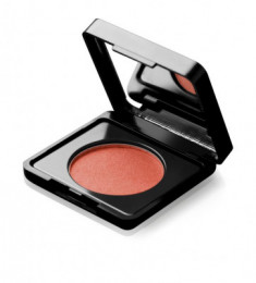 Румяна PAESE BLUSH ARTIST with argan oil тон 62 3г